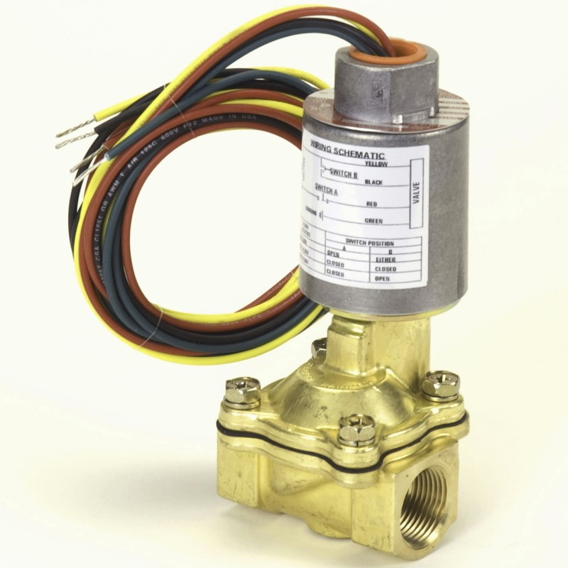 "PMP Gasboy® 2-Stage Valve 3/4"" threaded, with coil. PMP 22056, OEM 67054, 067200."